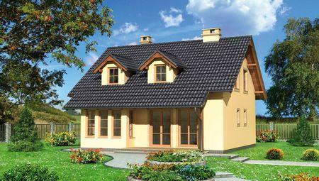 План стильного жилого дома с просторной гостиной