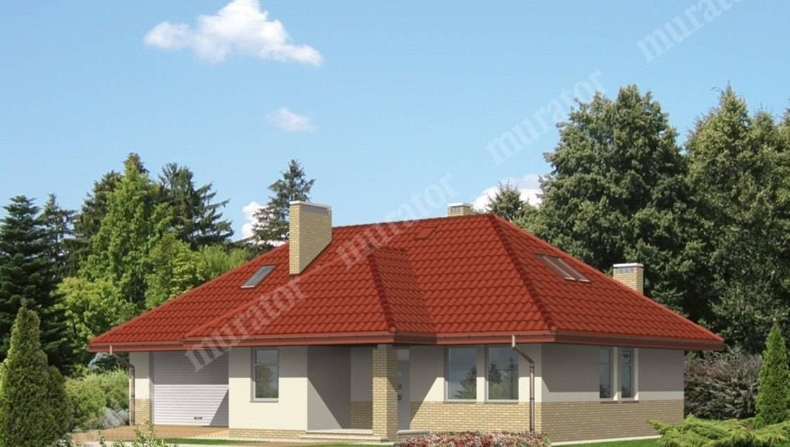 Проект большого дома с гаражом на 2 авто