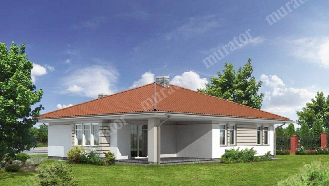 Проект одноэтажного дома с гаражом на 2 авто