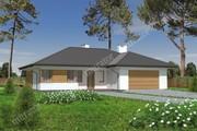 Проект одноэтажного просторного дома