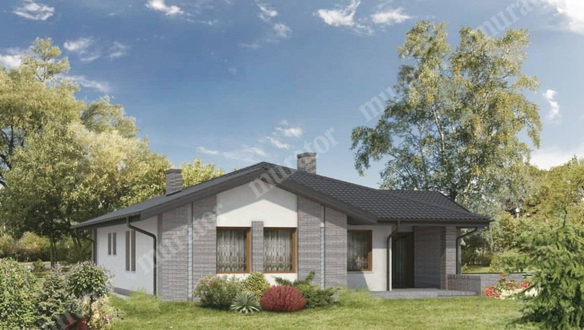 Проект симпатичного одноэтажного дома