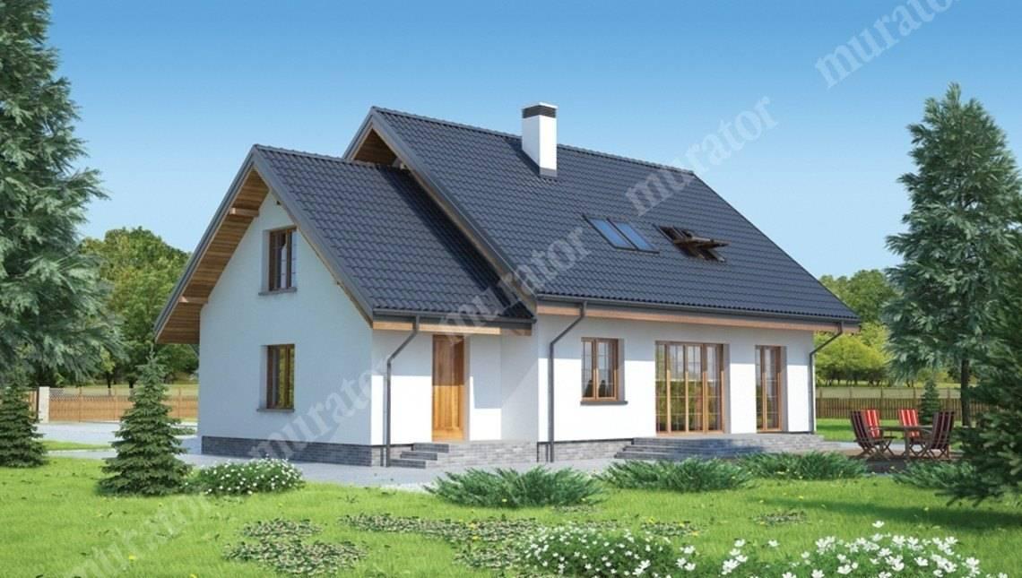 Проект видного особняка с высокой крышей