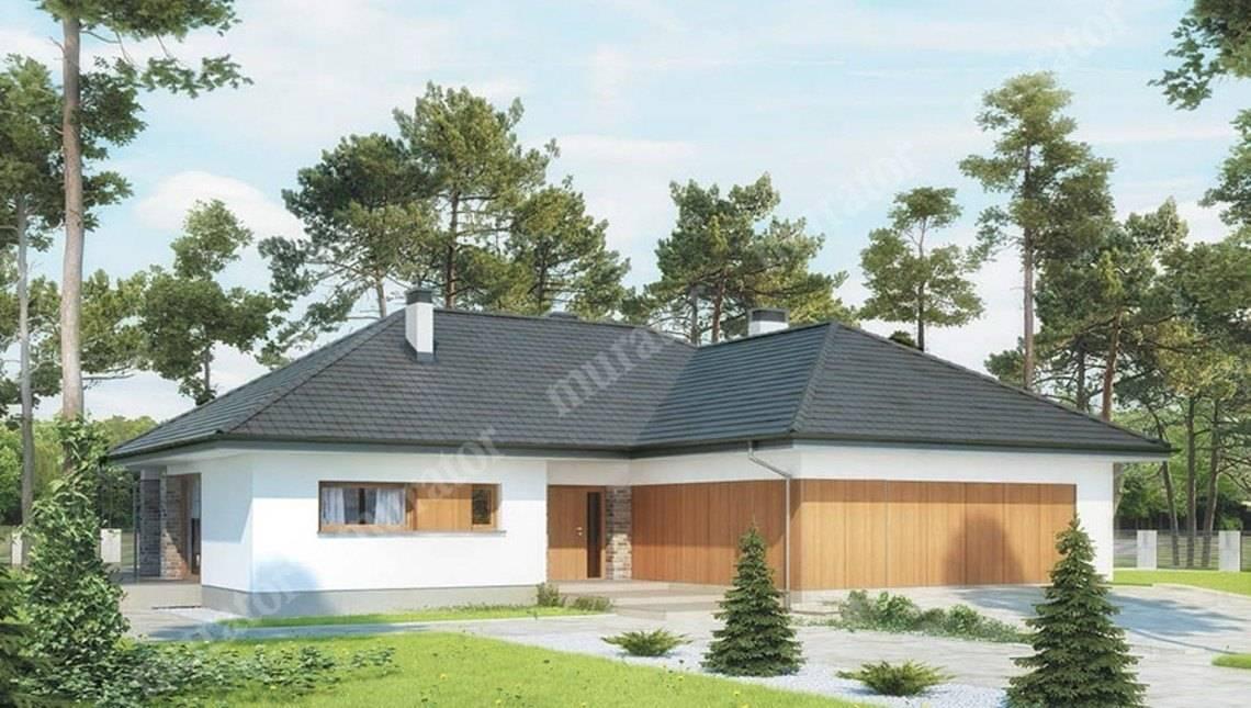 Проект одноэтажного дома в натуральных тонах