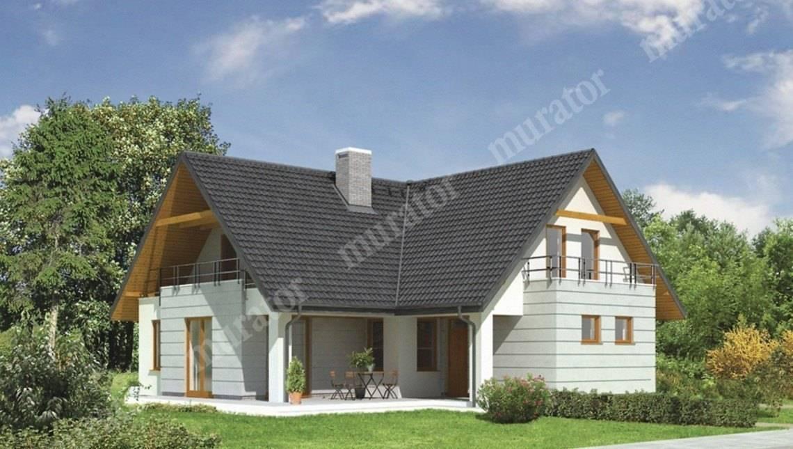 Проект красивого дома с большой гостиной