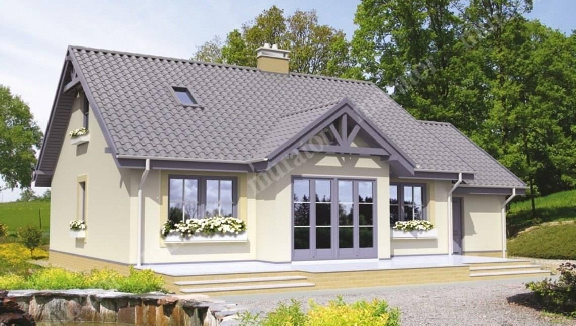 Проект жилого дома с двумя гостиными