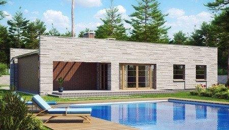 Проект одноэтажного коттеджа с плоской крышей, со светлым функциональным интерьером и гаражом